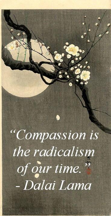 compassionsdalaiLama
